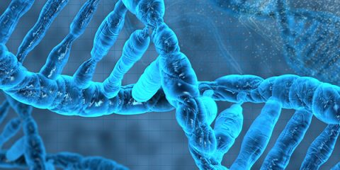 Image of representation of DNA double helix