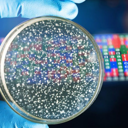 Advanced Courses and Scientific Conferences in partnership with FutureLearn launch a third online course – Bacterial Genomes: Accessing and Analysing Microbial Genome Data