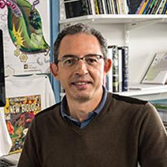 Sophien Kamoun