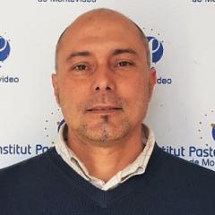Marcelo Comini