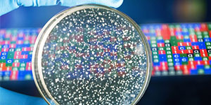 Bacterial Genomes: Accessing and Analysing Microbial Genome Data [Online Course]