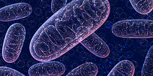 Mitochondrial Medicine [Virtual Conference]